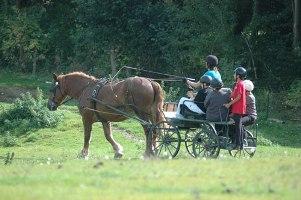 Equitation-Bonde-Ferment