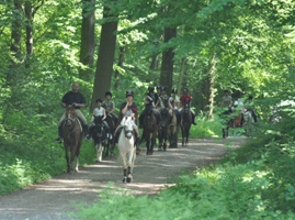 Equitation-Templiers-ALT-2