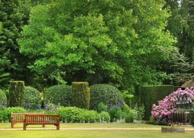 Jardins de Vascoeuil © ACVM .jpg réduit