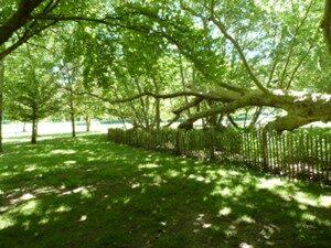 Parc Environemental - LE MASLE (9) bd