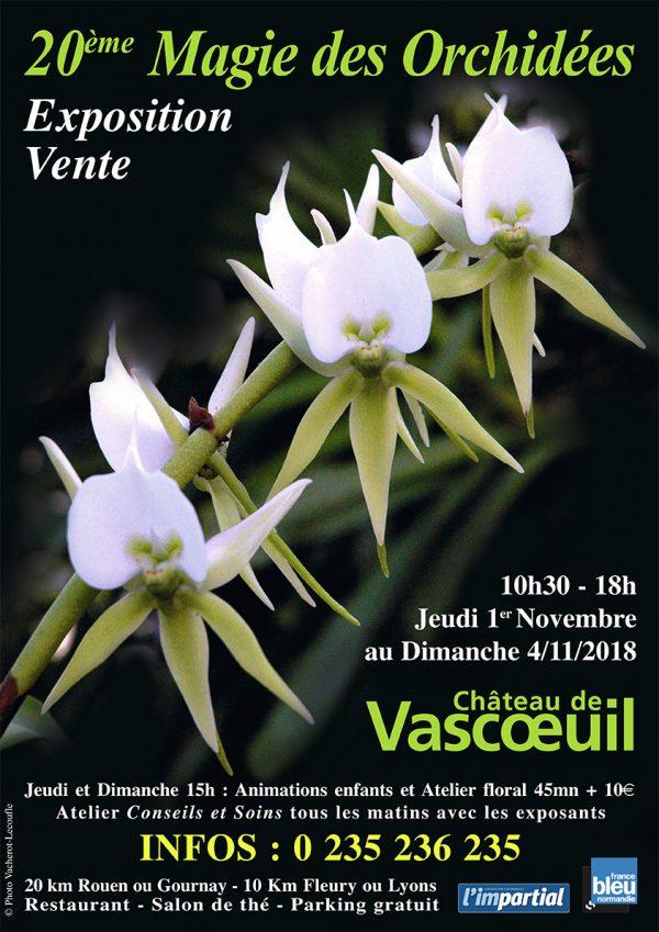 magie des orchidées